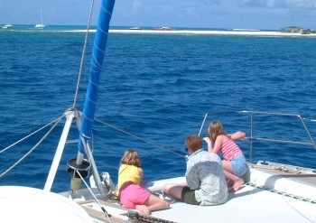 3 Harshbargers on the bow as we approach Sandy Island (off Anguilla)