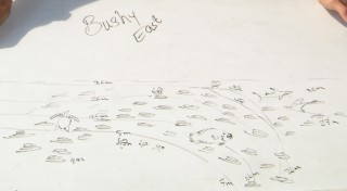 Hand-drawn profile of the Bushy east dive site