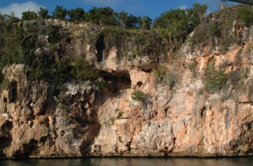 Nesting holes in the limestone cliffs near Crocus Bay, Anguilla