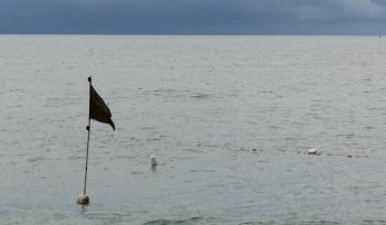 Fishing flags are ubiquitous on the Malay coast