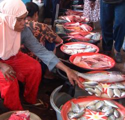 Fresh fish market in eastern Indonesia