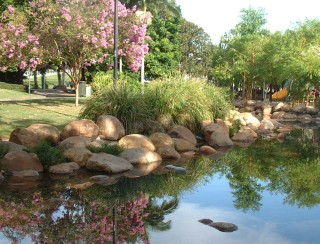 We loved the beautiful Brisbane Parks system