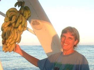 On the passage to Tonga: 40 bananas, 12 onions, 5 papayas, 1 pumpkin...