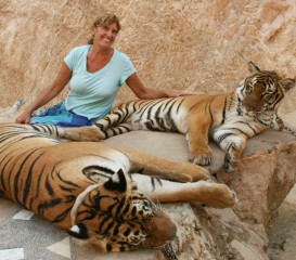 Sue posing with 2 tigers at the Tiger Temple, Kanchanaburi.