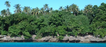 The Vava'u Group has karst coastlines, topped by palms and casaurina pines