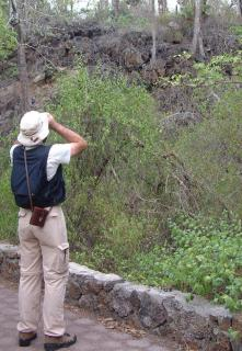 Tony stops for some birding along the trail to Las Tortugas.